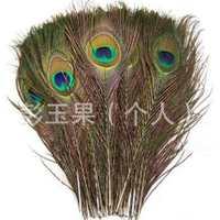 【羽毛批发】进口天然孔雀尾批发25-30cm优质羽毛义乌孔雀毛