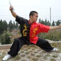 中国龙太极服武术服练功服表演服训练服儿童服装电脑绣龙