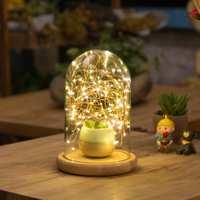 玻璃罩木台灯火树银花灯北欧创意台灯结婚礼物生日礼品装饰小夜灯