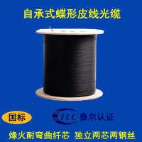光纤规格室外自承式单模独立两芯皮线光缆电信智能化工程皮线