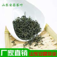 茶叶绿茶日照充足20新茶散装批发厂家直销山东莒南安昌