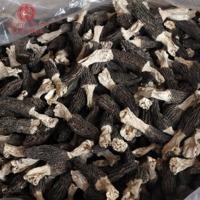 厂家直供羊肚菌干货肉厚煲汤材料山珍海味农产品散装批发100g/袋