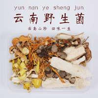 【黑标主厨】野生菌5种组合装食用野生菌菌汤包汤包组合