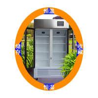 电子胶接剂恒温恒湿储存柜工业胶水恒温恒湿柜试剂恒温恒湿柜