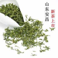 20年茶叶批发礼盒日照充足绿茶莒南山东特产厂家包邮