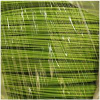 PVC包塑丝电镀锌铁丝2.2mm白色绿色包塑铁丝2.5mm包胶铁丝厂家