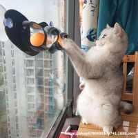 猫吸盘轨道球玩具墙面玩具逗猫波浪球型娱乐猫玩具窗台成幼猫用品