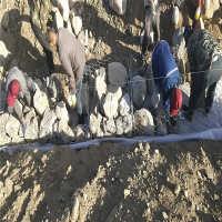 安平钢筋石笼网厂家加筋格宾网电焊网隔离栅现货