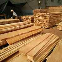 室内 高 楝木板材配件烘干