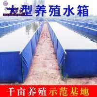 帆布锦鲤养鱼池篷布刀刮布水池箱大棚高密度养殖龙虾大型加厚折叠