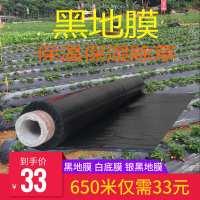 农用黑地膜蔬菜种植育苗除草防草加厚保温保湿黑白大棚塑料薄膜