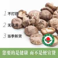 有机香菇干货干香菇椴木特级小干香菇椴木60g*5盒非野生500g散装