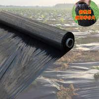 黑地膜除草黑色果园农用地膜蔬菜大棚塑料薄膜加厚保温膜防草膜