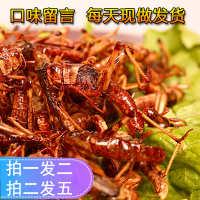 新鲜油炸蚂蚱即食烧烤香辣椒盐土特产养殖蝗虫美食小吃昆虫包邮