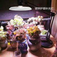 植物生长补光灯家用食虫草绿植月季水培花卉全光谱led多肉灯