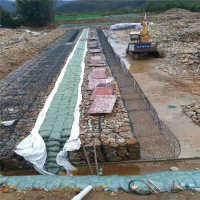河北安平石笼网厂热镀锌电焊钢丝网格宾网现货