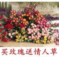 真花的干花蔷薇花束玫瑰混搭北欧小清新装饰滴胶DIY手工材料