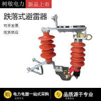 现货供应10KVHY5WS-17/50DL户外跌落式避雷器可卸式避雷器