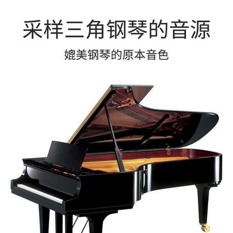 顺丰包邮手卷电子钢琴88键61键专业版成人初学者练习便携式