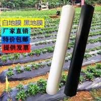 黑地膜除膜防地膜蔬菜大棚塑料薄膜保温农用果园白色地膜PO膜