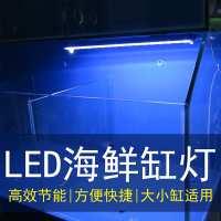 螃蟹海鲜池鱼缸LED照明灯节能防水方管蓝色外壳PVC管道配件灯光