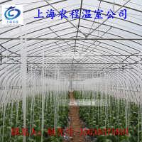 单体8米宽钢管大棚蘑菇大棚甘肃大棚安装13816407723
