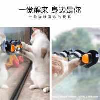 逗猫棒墙面窗台磨爪器成幼猫玩具猫咪玩具球宠物逗猫用品吸盘轨道