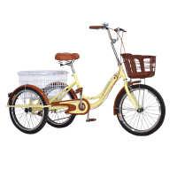 人力三轮车脚踏脚蹬脚踩老年代步自行车小型拉货单车双人单人