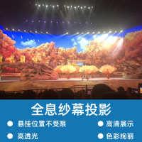 全息纱幕投影展览展示舞台表演3D立体活动宣传互动投影互动地面
