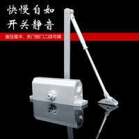自动缓冲闭门器液压家用关门器双弹簧防冻油中号不定位自关门机